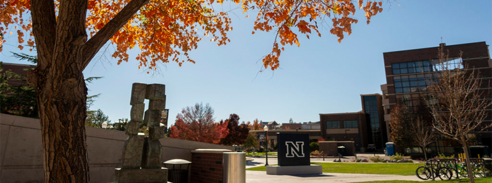 Fall tree next to the N sign on campus.